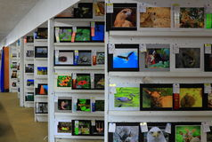 Fine Art Exhibition. For competition at fair or festival Stock Photography