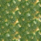 Art Green, gota amarilla de la pintura de la tinta de la acuarela Fotos de archivo libres de regalías