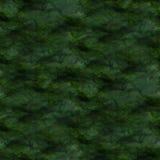 Art Green, gota negra de la pintura de la tinta de la acuarela Imagenes de archivo
