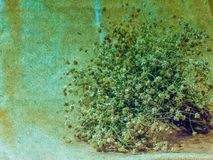 Art grunge autumn floral vintage background Stock Images