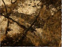 Art grunge background card. Art grunge floral background card Stock Image
