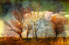 Art grunge creepy landscape Royalty Free Stock Photography