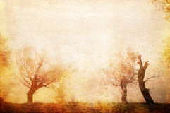 Art grunge creepy landscape in sepia tones Royalty Free Stock Photography
