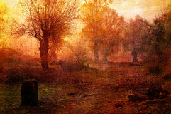 Art grunge creepy landscape in sepia tones Stock Images