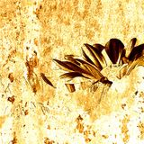 Art grunge floral background. Card Royalty Free Stock Image