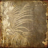 Art grunge floral background Royalty Free Stock Photos
