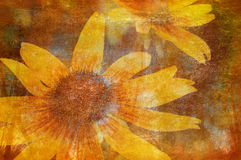 Art grunge floral background Stock Photos