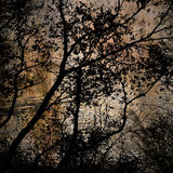 Art grunge forest background card Stock Images
