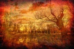 Art grunge landscape spooky forest in spring Stock Image