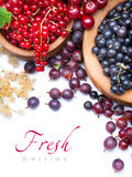 Art Healthy fresh berries on white background Stock Images
