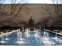 Art Institute of Chicago. Garden Outdoors On Spring Day Located Downtown stock photos