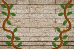 Art ivy on old brick wall background Stock Photography