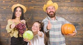 Art-Landwirtmarkt der Familie rustikaler mit Fallernte Erntefestkonzept Familienlandwirte mit der Ernte h?lzern stockfoto