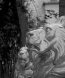 Art lions. Lions en the park Stock Images