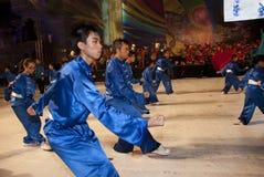 art martial performer Στοκ Εικόνες