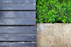 Art mit drei Mustern im Garten für Hintergrund Lizenzfreies Stockfoto