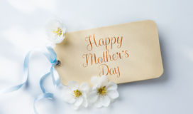 Art mother's day background with white blossom Stock Image