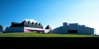 Art Museum av södra Texas Royaltyfri Fotografi