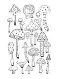Art mushrooms set, sketch for your design Stock Images