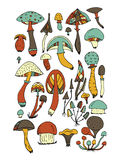 Art mushrooms set, sketch for your design Royalty Free Stock Photography