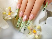 Art nail floral design. Stock Photography