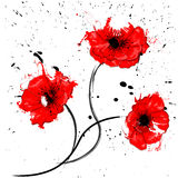 Art natural background. Art natural red poppy background Stock Photos