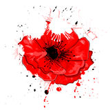 Art natural background. Art painted red poppy background Royalty Free Stock Photography