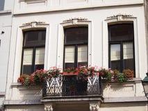 Art Nouveau Windows in Brussel Stock Foto's