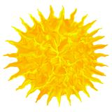 Art oil drawing colorful grunge sun isolated abstract background. Illustration Stock Image