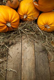 Art orange pumpkins on wooden background Stock Photography