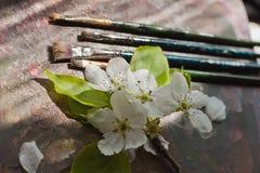 Art paint brushes, palette, flower Royalty Free Stock Photo