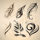 Art painted feathers. vector illustration Royalty Free Stock Image