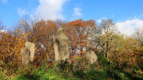 Art In The Park With Autumn Scene Stockbild