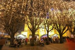Art Pavilion med upplysta träd Royaltyfri Fotografi
