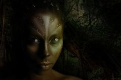 Art photo of Africal woman with tribal ethnic paintings on her face stock photography