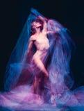 The art photo-emotional dance of beautiful ballerina Stock Images