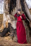 Art Photography Concepts Mystisk härlig felik medeltida prinsessa i röd klänning och spetsig svart krona i skog i tidigt royaltyfria bilder