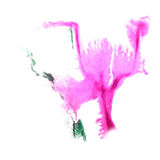 Art Pink, green watercolor ink paint blob Stock Photo