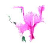 Art Pink, groene de verfvlek van de waterverfinkt Stock Foto
