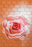 Art pink roses on a brick wall. Stock Images