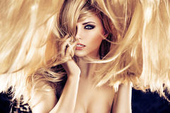 Art portrait of a blond woman with a fluffy coiffure Royalty Free Stock Photos