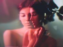 Free Art Portrait Feminine Beauty Woman Neon Red Light Royalty Free Stock Photo - 192450085