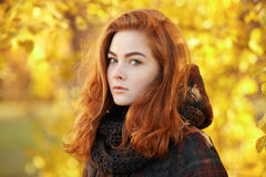 Art portrait of young curious redhead woman  in scarf and plaid jacket with autumn foliage background outdoors Stock Photography