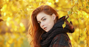 Art portrait of young emotional redhead woman  in scarf and plaid jacket with autumn foliage background outdoors Royalty Free Stock Photography