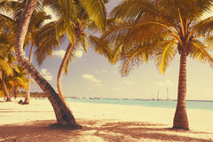 Art retro seaside view background Stock Images