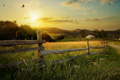 Art rural landscape Royalty Free Stock Images