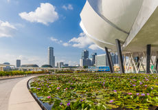 Art Science Museum building and Singapore skyline Royalty Free Stock Photo