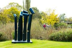 Art Sculpture Exhibition all'aperto al parco di Nirox immagine stock