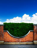 Art shrubs and brick fence background Royalty Free Stock Photography
