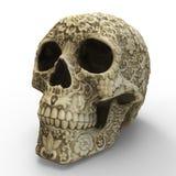 Art Skull Royalty-vrije Stock Foto
